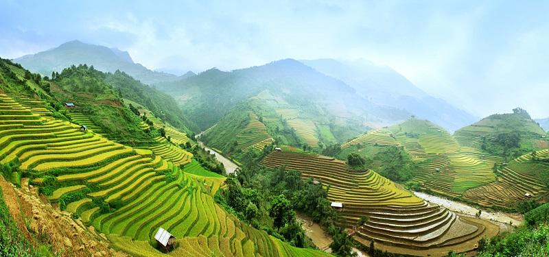 Campos de arroz a los que viajar con Bhárad