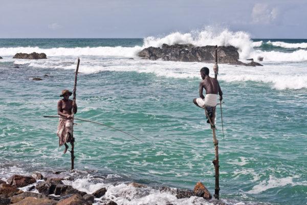 Arte de la pesca en Sri Lanka