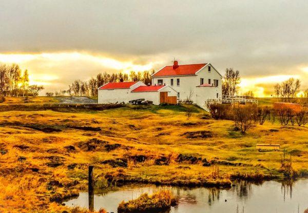 Bharad Travel. Paisaje de Myvatn. Islandia